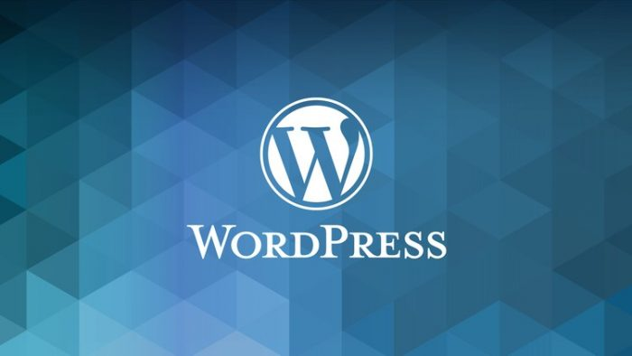 How To Get A WordPress Website Online